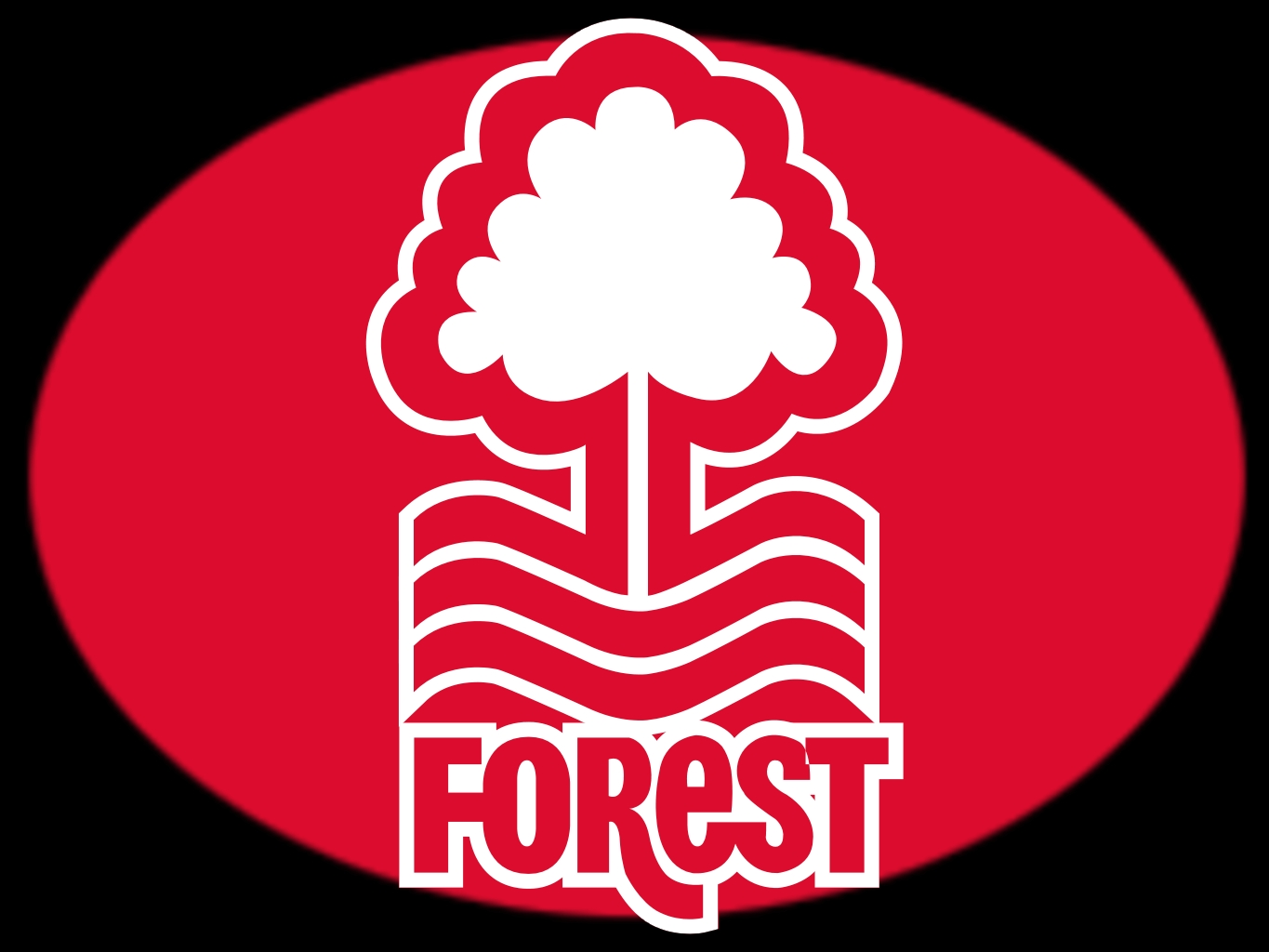 nottingham forest - photo #21